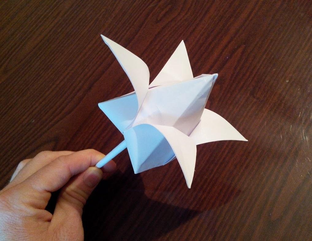 Как оригами в домашних условиях 674
