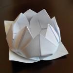 Цветок лотоса оригами, 12 лепестков, (Вариант 1)