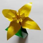 Нарцисс оригами, 4 лепестка (František Grebeníček)