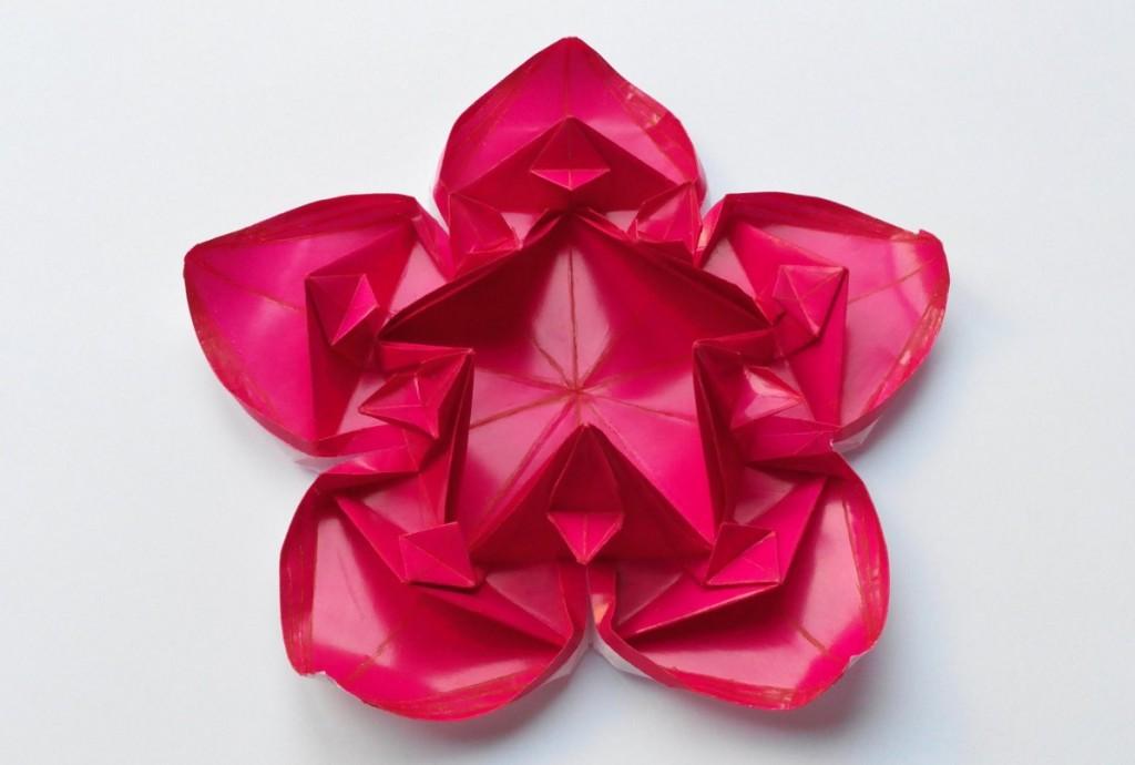 Цветок 10 (Алексей Жигулёв)