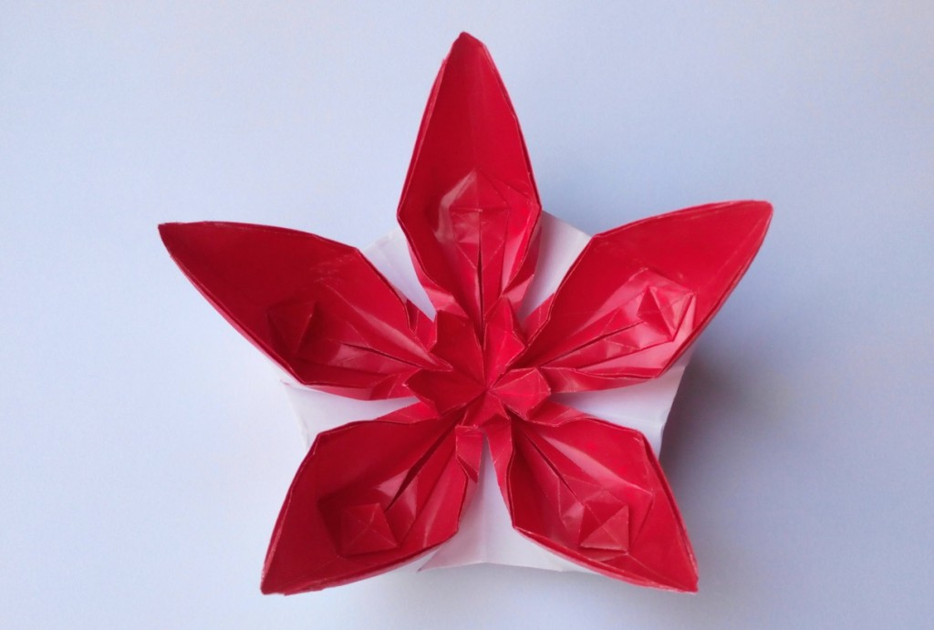Цветок 13 (Алексей Жигулёв)