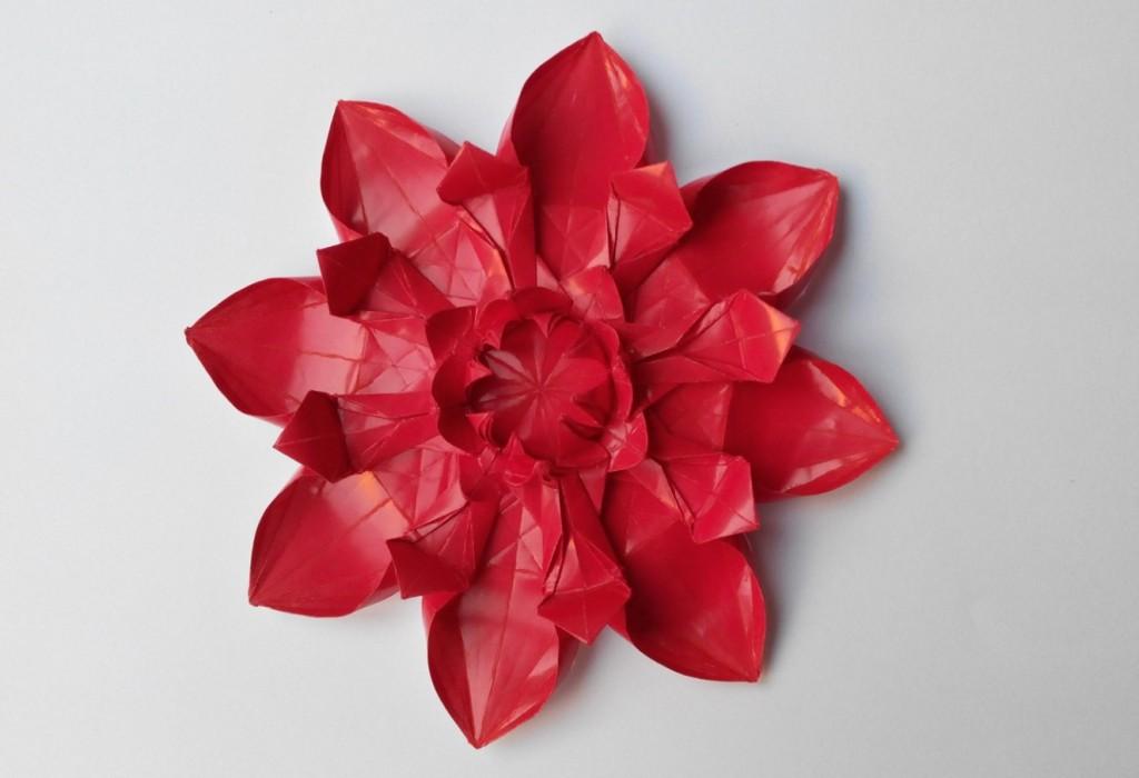 Цветок 6 (Алексей Жигулёв)