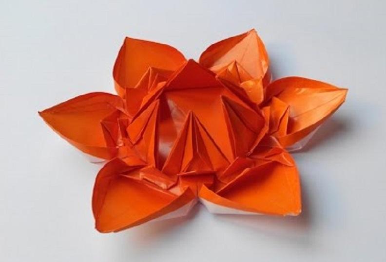 Цветок 7 (Алексей Жигулёв)
