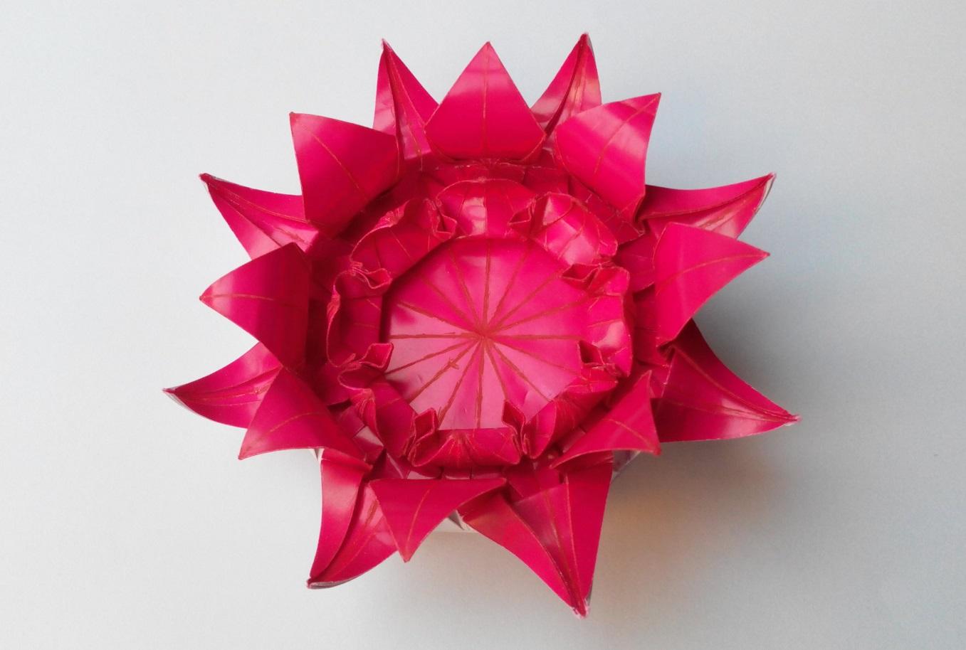 Цветок 9 (Алексей Жигулёв)