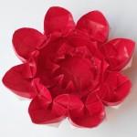 Цветок 16 (Алексей Жигулёв)