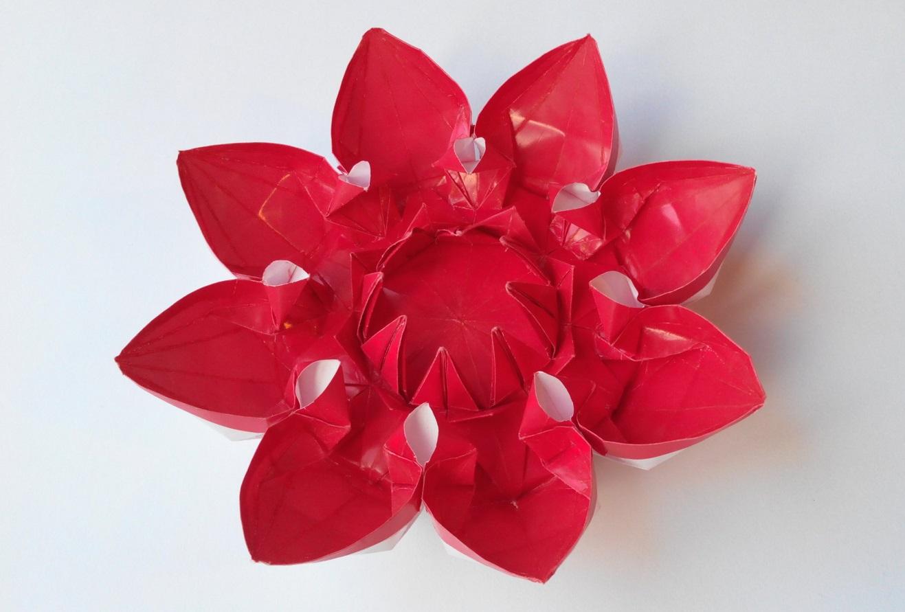 Цветок 17 (Алексей Жигулёв)