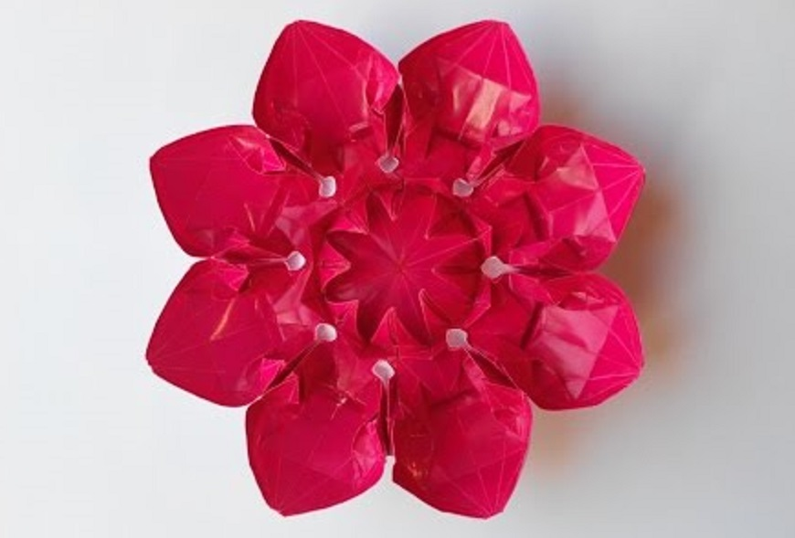 Цветок 18 (Алексей Жигулёв)