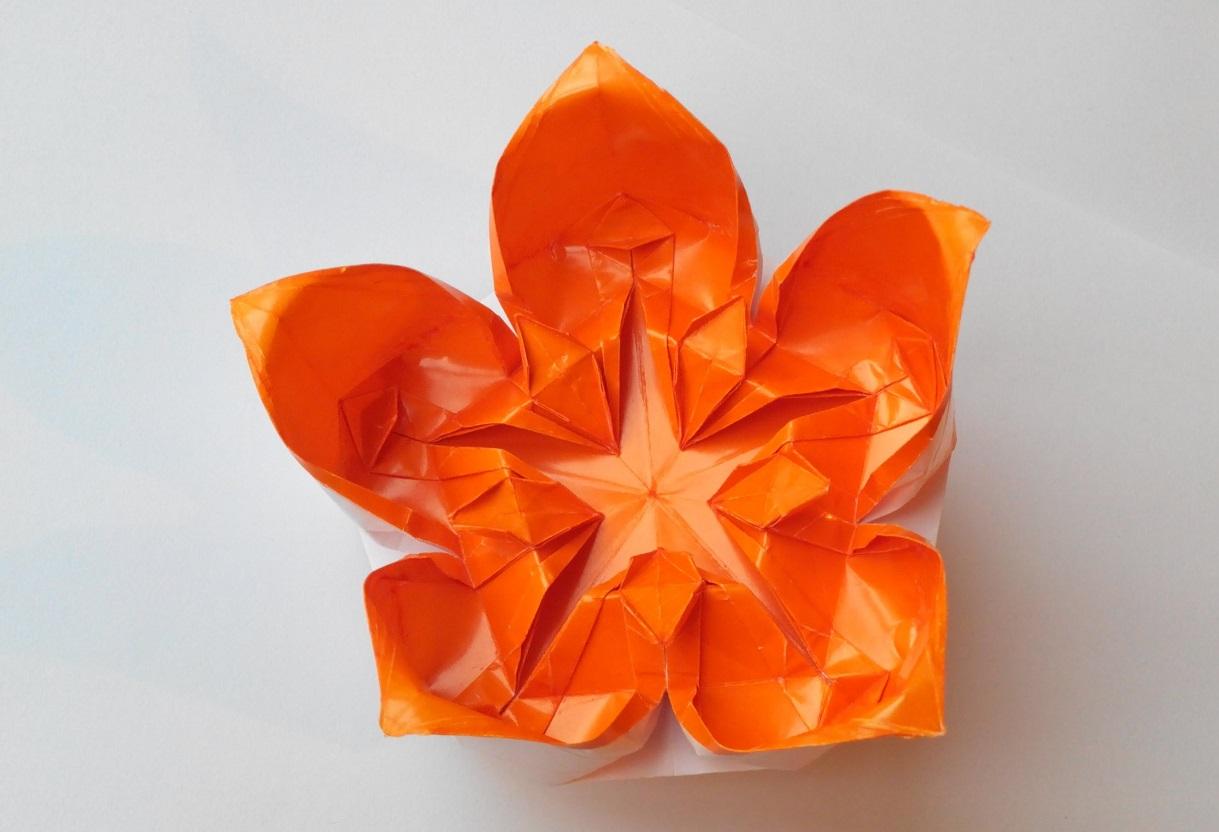 Цветок 19 (Алексей Жигулёв)