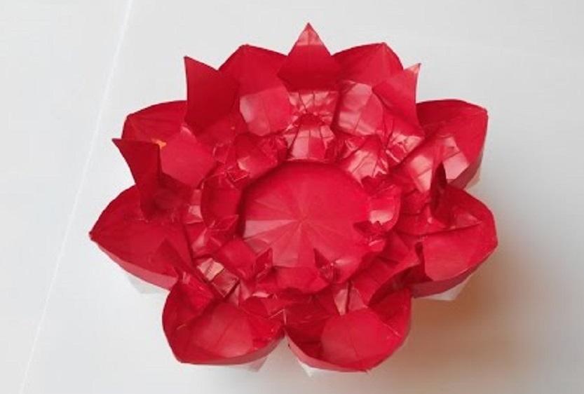 Цветок 20 (Алексей Жигулёв)