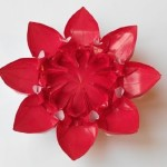 Цветок 21 (Алексей Жигулёв)
