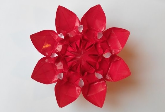 Цветок 22 (Алексей Жигулёв)